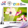 2015 de 50-duim e-LED van Uni Wide Screen Slim Panel TV