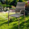 Rotin dinant des meubles de jardin de chaise