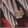 철강선 밧줄 6*19ws-FC ISO9001: 2008년