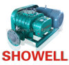 Corrosão Proof Biogas Roots Blower para Conveying Gas (Rotary Blower)