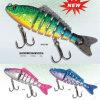 Attrait de pêche de palan de pêche de matériel de pêche (HFB100)