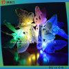 Solarzeichenkette-Licht der Basisrecheneinheits-12LED