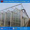 Invernadero de la PC del invernadero de la hoja del policarbonato de China para las flores (PC GH)