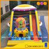 Big Outdoor Outdoor Corflful Slide inflável (AQ01181)
