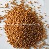 El extracto de Biloba del Ginkgo Sostener-Release/versión pelotillas