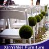 Matériau en plastique blanc de résine de chaise du pliage le meilleur marché