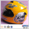 落書きDesign Full Face MotorcycleかMotorbike Helmet (FL112)