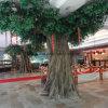 부동산을%s 옥외 인공적인 반얀 나무