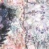 ثوب [ديجتل] طباعة [شفّون] [سلك فبريك] ([إكسف-0101])