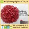 昇進のフルーツのセイヨウカリンによって乾燥されるWolfberryのハーブティー