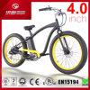 최신유행 디자인 48V13ah 모든 지형 4.0 인치 폭 뚱뚱한 타이어 500W 바닷가 함 전기 자전거