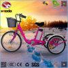 Triciclo eléctrico de la bici de 3 ruedas para el cargo