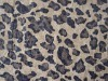 Nuovo Design Golden Foil Suede Fabric per Sofa (ESCF-133-3)