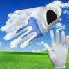 Перчатка гольфа Cabreaal (CL-04)
