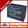 Sac de papier de cadeau de modèle d'OEM (3239)