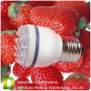 LED Bulb Light (DD-AQT)