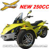 ATV de carreras, Racing Quad, Racing Trike quad Quad (MC-389)