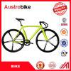 최신 판매 신제품은 세륨을%s 가진 판매를 위한 싼 Fixie에 의하여 고쳐진 기어 자전거 프레임 700c MTB 자전거 자전거에 의하여 자유롭게 과세하는 속도를 골라낸다