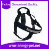 Ropa de moda durable y útil del animal doméstico del harness del perro
