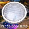 252 lampada/illuminazione della piscina di SMD LED 12V PAR56 LED