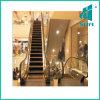 Scala mobile per l'Somma-Elevatore del centro commerciale