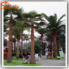Fiberglass의 정원 Decoration Artificial Palm Tree Made