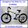 Sw900 LCDの表示が付いている28インチ山Eの自転車