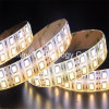 600LEDs por el rodillo 5050SMD 12VDC impermeabilizan la luz de tiras flexible del LED