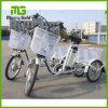 ثلاثة عجلة شحن كهربائيّة درّاجة ثلاثية تحميل كثير وزن