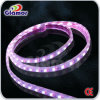 5050 SMD LED Strip Light met Ce Waterproof voor Holiday Decoration