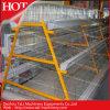 Cage animal para Chicken Cage