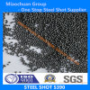 StahlShot (S390) mit ISO9001 u. SAE