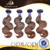 초콜렛 색깔 초콜렛 머리 Malaysian 바디 파