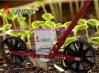 Нажима руки сеялки цены по прейскуранту завода-изготовителя плантатор ручного Vegetable Vegetable для Vegetable семени