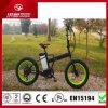 E-Bici plegable de la E-Bici de la montaña de 2015 grasas hecha en China