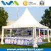 tente de pagoda de 5mx5m pour la publicité
