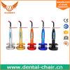 재충전용 다채로운 치과 치료 가벼운 단위