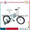 [س] وافق 12  14 16 18 20 أطفال درّاجة في الصين, رخيصة جدية درّاجة سعر جديات درّاجة لأنّ 3 5 سنون أطفال قديم ال [موونتين بيك]