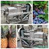 Двойная машина давления сока ананаса винта с быстрой поставкой