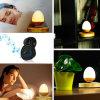 Beste Prijs voor de Mini Draagbare Draadloze Spreker van Leivtating Bluetooth van het Ei met HOOFD Lichte Magnetische Drijvende Spreker