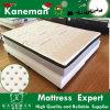Environmenttal und grüne Schaumgummi-Matratze mit organischem Latex