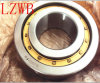 Single Row Brass Cage Cylindrical Roller Bearing (NU, NJ, NF, NUP)