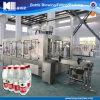Accomplir la chaîne de production de l'eau pour la bouteille d'animal familier