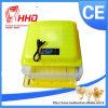 Hoher huhn-Ei-Inkubator der Ausbrütenkinetik-Ew-88 Minifür Verkauf