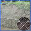 斜面の保護くもの螺線形ロープのネット