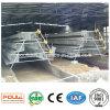 Système de cage de couche de cage de poulet de vente d'usine de qualité