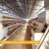 Un type cage automatique de couche de poulet a conçu le matériel pour la ferme avicole