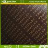 18 pegamento de la melamina de la base del álamo de Mm* 1220*2440 madera contrachapada de dos veces (w15507)