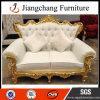 Sofa matériel de luxe populaire de bonne qualité du sofa FRP (JC-S03)