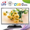 Écran plat 23.6 E-LED TV de 2015 Uni/OEM